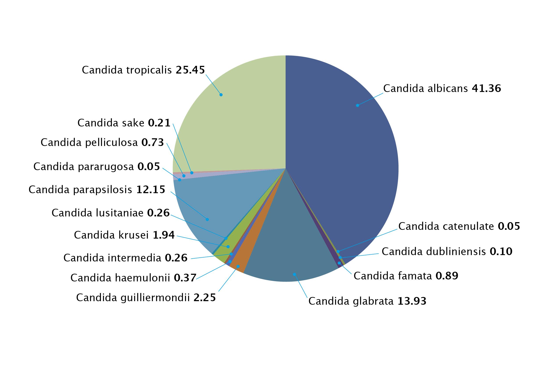 AFWG_Candidemia_Asia_Data_2